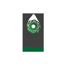 Logo LAQV